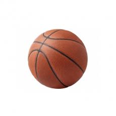 Regulation Basketball for Rent