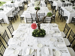 Back Chiavari chairs at event tables